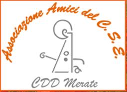 """Al centro immagine stilizzata di una persona; sopra di essa le parole """"Associazione Amici del CSE"""", sotto la sigla CDD Merate."""