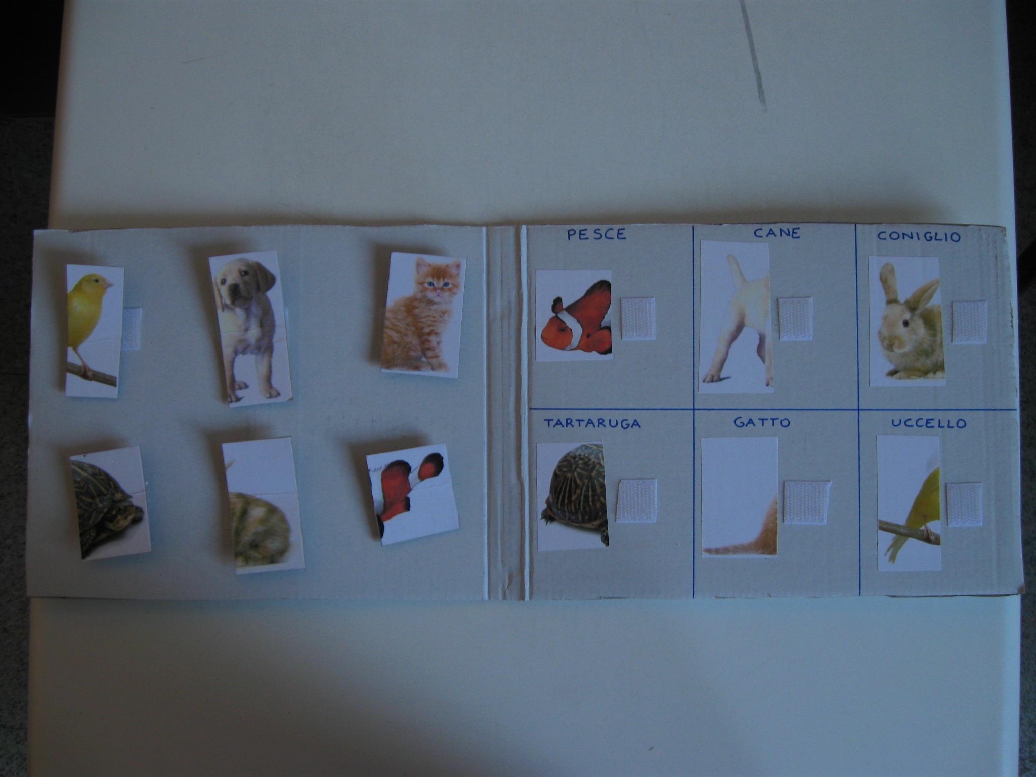 A sinistra sei foto di animali divisi a metà attaccate con il velcro. A destra sei foto degli stessi animali rappresentanti l'altra metà.