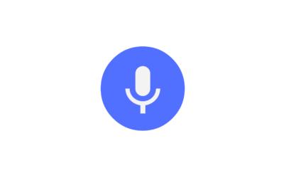 Riconoscitori vocali e disabilità